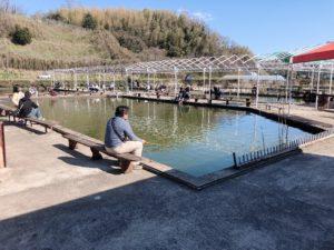 谷養魚場の釣り堀の中の様子