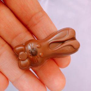 チョコレートを手に持っている