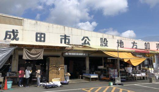 【成田ヤマニ】市場へ直撃!鮮度バツグン海鮮祭り