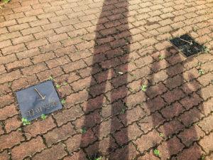 地面に影が映っている